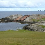Figure 6. Felsic dykes, Wilgi Geos, North Mainland.